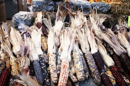 Jean-Talon Market, Montreal - rainbow corn
